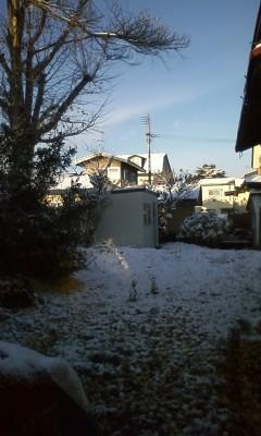 初雪です!